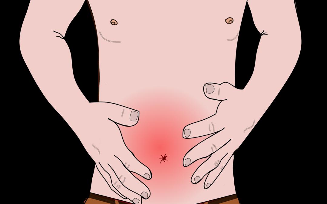 Tipps für einen gesunden Darm